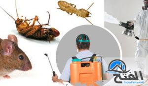 شركة رش حشرات في الشارقة